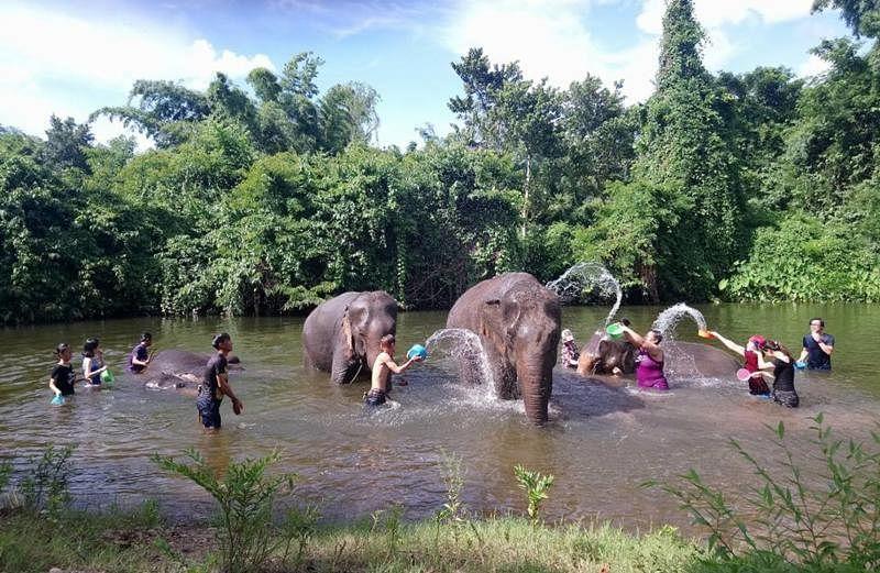 游客在象夫的陪伴和指导下,为大象洗澡。