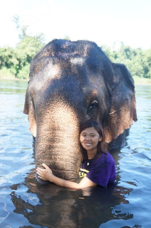 """翁铭芯和她最喜欢的大象Kammon,它是""""大象世界""""最大只的,体重4200公斤。"""