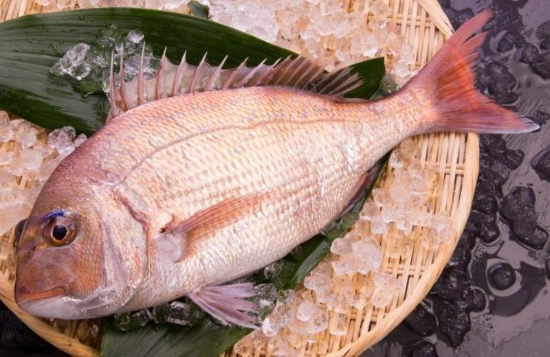 Nami使用樱花红鲷制成特色料理。