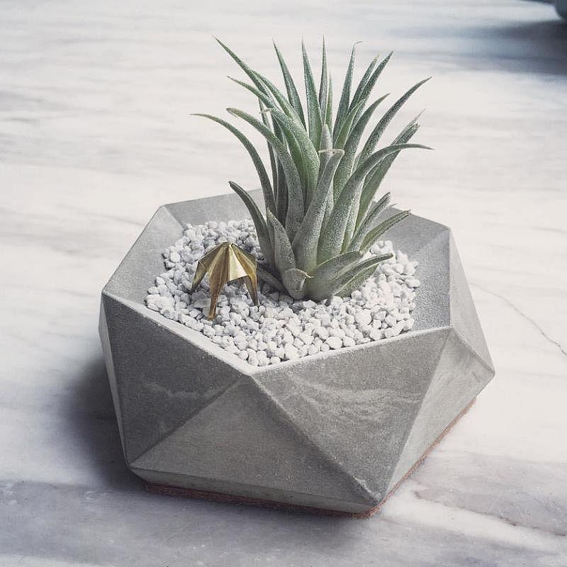 水泥制成的迷你花盆。