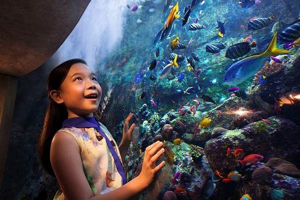 Dubai Atlantis.jpg