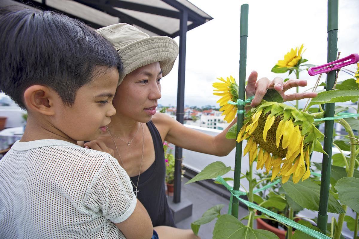 丁玉莲希望让孩子看到花果自然生长的样子。