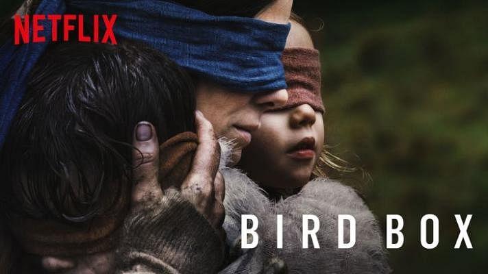 bird-box_Small.jpg