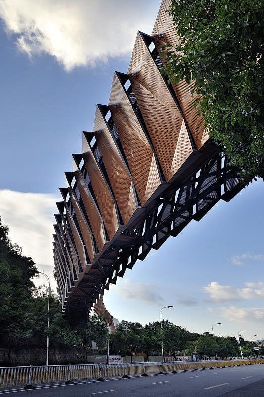 脊椎骨节形状的洪甘天桥像新加坡的亚历山大拱桥,从闽江河畔跨越洪甘路,公众可安全地从国光公园登上金牛山。