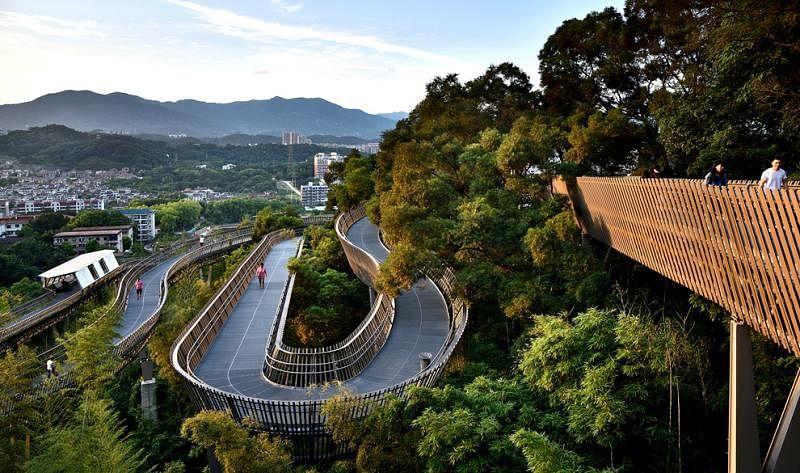 步道以1:16的无障碍标准设计,每16米升降1米,公众走得轻松,景观层次丰富。
