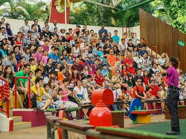 《新加坡动物园:新春祝福表演》.jpg