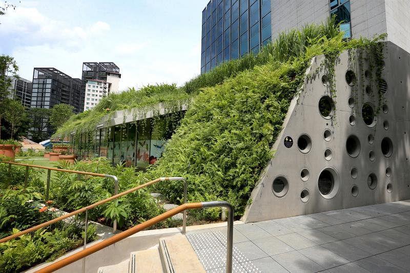 从二楼攀爬到二楼半露出一小间作为咖啡座用的店面,周围爬满本地热带植物,像是露出一角绿油油的山丘。