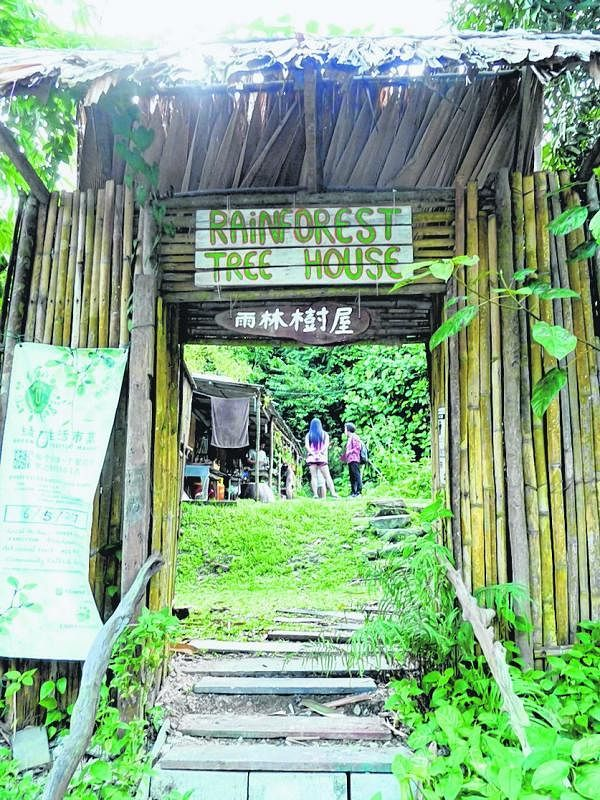 雨林树屋, 独树一帜。