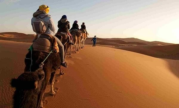 camel_ride_in_sahara_desert_1700_x_1024_Medium.jpg