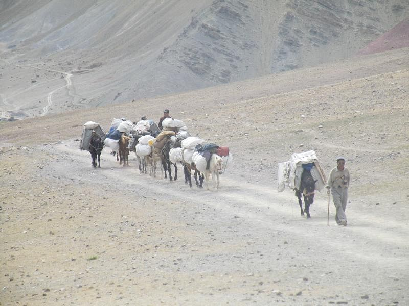 行走在通往Tingmosgang大山里的马帮和转山的村民。