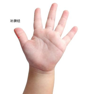 bu_pi_jing__Small.jpg