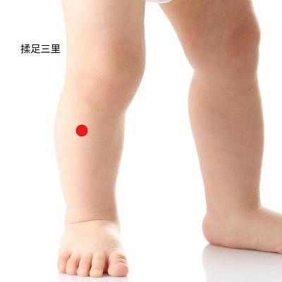 rou_zu_san_li__Small.jpg