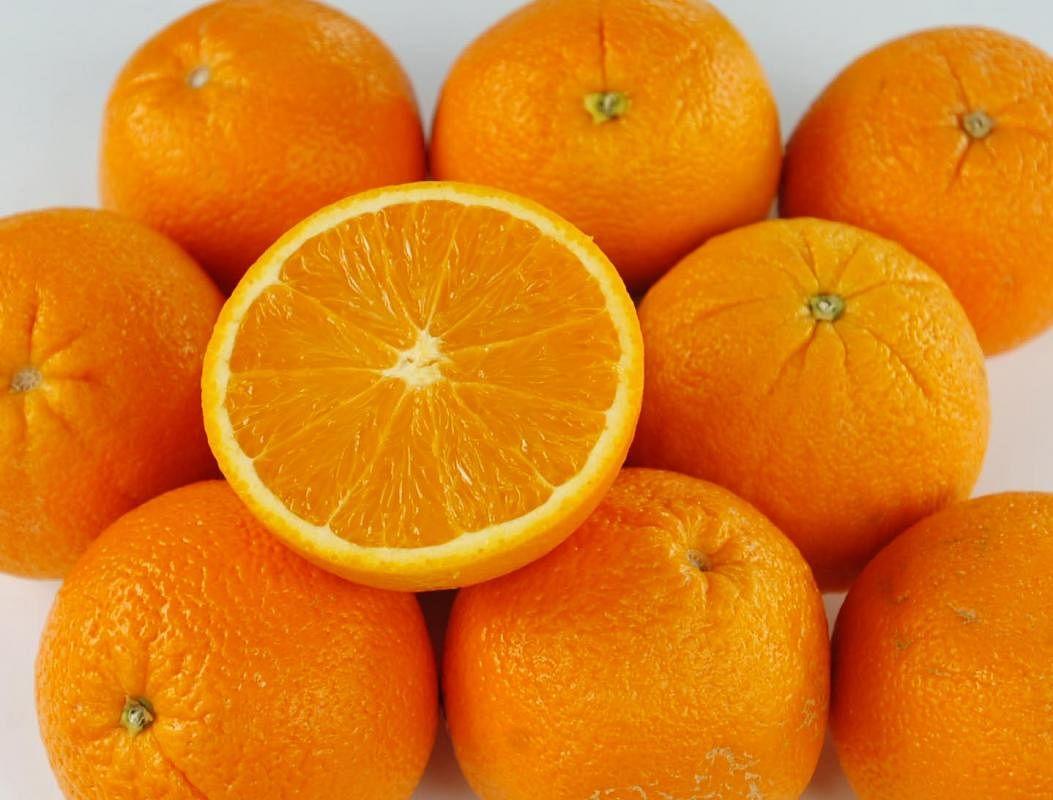 20190918_news_orange_Large.jpg