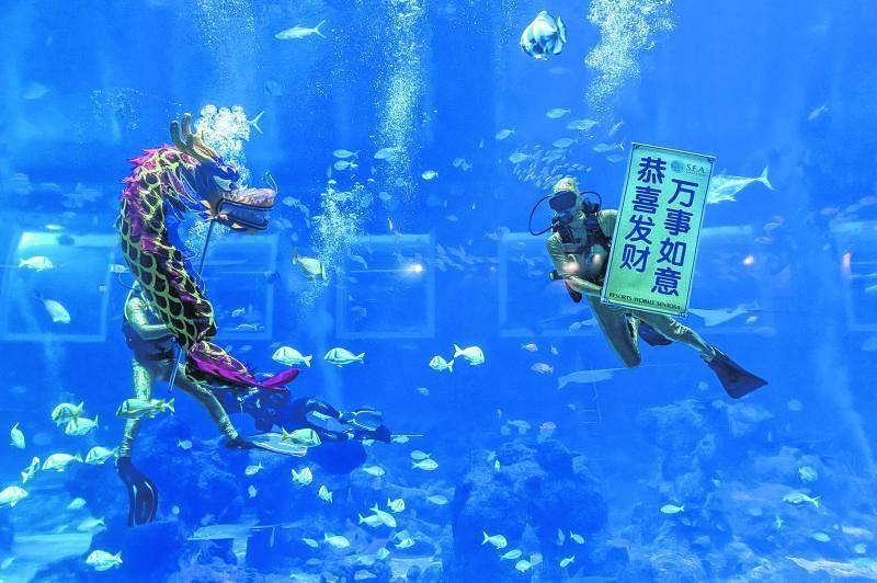 S.E.A.海洋馆的海底舞龙表演。(圣淘沙名胜世界提供)