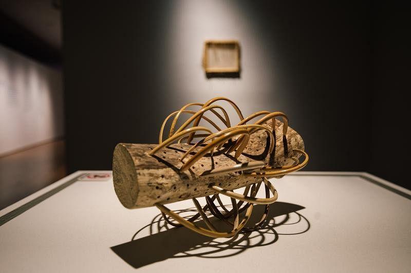 维克多·保罗·布朗·滕的《框架(作品)》将一张未使用的藤制椅子解构成为一系列藤制雕塑。(新加坡美术馆提供)
